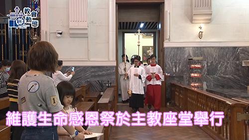 維護生命感恩祭於主教座堂舉行