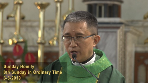 8th Sunday in Ordinary Time (03-03-2019, Year C)