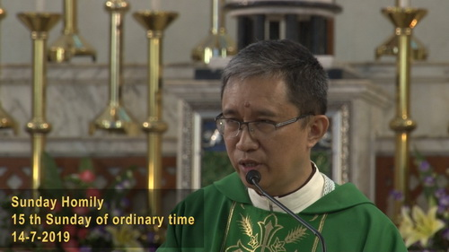 15th Sunday of Ordinary Time (14-7-2019, Year C)