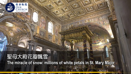 The miracle of snow: millions of white petals in St. Mary Major