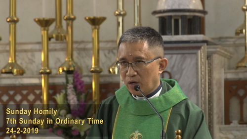 7th Sunday in Ordinary Time (24-2-2019, Year C)