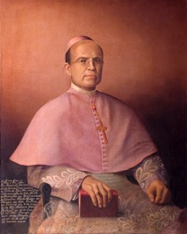D. Manuel Bernardo de Sousa Enes(1873-1883)