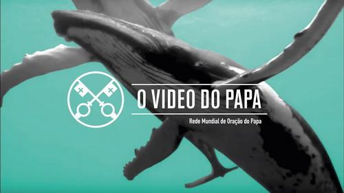Proteção dos oceanos [Edição extensiva] - O Vídeo do Papa 9 - Setembro 2019