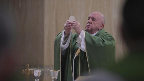 教宗清晨彌撒:成為基督徒,意味著接受耶穌的道路