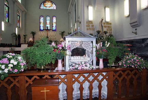 主教座堂慶祝堂慶 主日學及慕道班招生